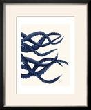 Giant Octopus Blue Triptych c