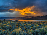 Sierra Scene