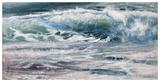 Shoreline study 10716 Reproduction d'art par Carole Malcolm
