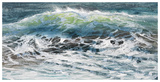 Shoreline study 08916 Reproduction d'art par Carole Malcolm