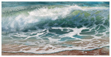 Shoreline study 17016 Reproduction d'art par Carole Malcolm