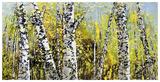 Treescape 21816 Reproduction d'art par Carole Malcolm