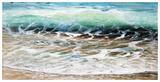 Shoreline study 19916 Reproduction d'art par Carole Malcolm