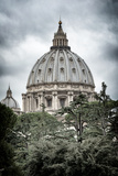 Dolce Vita Rome Collection - St Pierre de Rome Basilica II