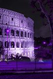 Dolce Vita Rome Collection - The Colosseum Purple Night II