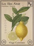 French Stamp - Lemon