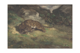Leopard and Serpent  1810–75