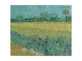 Field with Flowers near Arles  1888