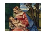 Madonna and Child  c1508