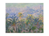 Palm Trees at Bordighera  1884