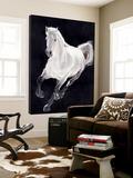 Le cheval blanc Toile Murale Géante par Stefano Altamura