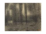 Poplars  c1883-4