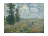 Poppy Fields near Argenteuil  1875