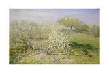 Spring (Fruit Trees in Bloom)  1873