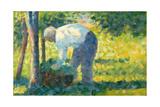 The Gardener  1882-83