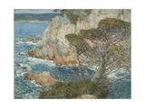 Point Lobos  Carmel  1914