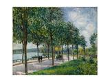Allée of Chestnut Trees  1878