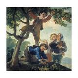 Boys Picking Fruit  1779-80