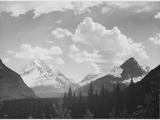"Looking Across Forest To Mountains And Clouds ""In Glacier National Park"" Montana 1933-1942"