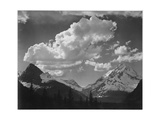 "Tops Of Pine Trees Snow Covered ""In Glacier National Park"" Montana 1933-1942"
