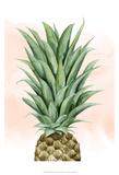 Pineapple on Coral II Reproduction d'art par Grace Popp