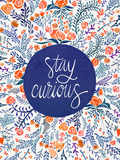 Stay Curious Red Navy