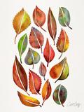 Fall Leaves Reproduction d'art par Cat Coquillette