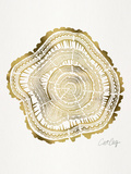 Gold Tree Rings