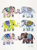 Elephant Collection Cool