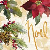 Christmas Poinsettia III