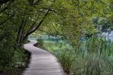 Empty Boardwalk, Lower Lakes, Plitvice Lakes NP, Croatia. Before The Large Waterfall Or Veliki Slap Tableau sur toile par Karine Aigner