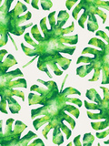 Monstera Leaves Reproduction d'art par Tracie Andrews
