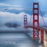 Golden Gate Bridge VIII