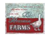 Blue Mountain Farms