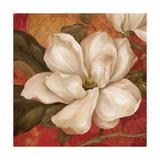 Magnolia on Red II