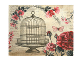 Birdcage & Blossoms