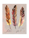 Feathers Fig 1