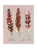 Feathers Fig 2