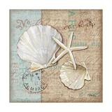 Linen Shells I