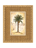 South Palm I