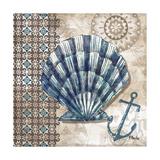 Tide Pool Shells II Reproduction d'art par Paul Brent