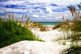 To the Beach I