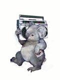 Koala Reproduction d'art par Laura Grave