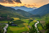 Rice Field on Terraces Panoramic Hillside with Rice Farming on Mountains Beautiful Shape in Nature