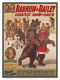 Barnum & Bailey Circus - Greatest Show on Earth - Bears that Dance