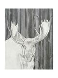 Barnwood Lodge Sketch II