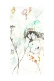 Wildflower Breath II