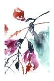 Hanging Fuchsia II