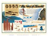 The Big Surf of Hawaii - Primo Hawaiian Beer - Hawaii Brewing Company