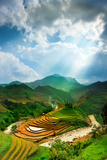 Rice Fields on Terraced of Mu Cang Chai  Yenbai  Vietnam Rice Fields Prepare the Harvest at Northw